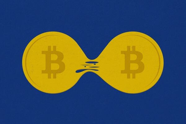 В результате хардфорков криптовалют появляются новые монеты.