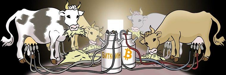 Ферма для макнинга криптовалют - непростая задача.