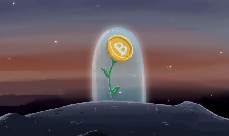 BitGo запускает «Обернутый биткойн» на основе Ethereum