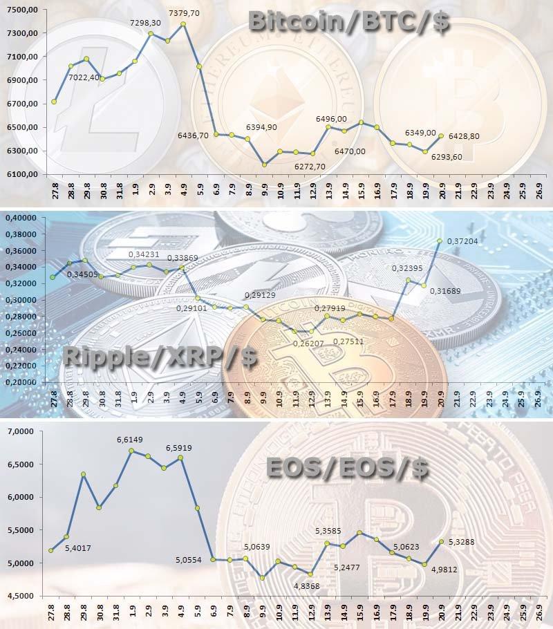 Рипл — криптовалюта №1 по мнению «Ассоциации Биткоин Россия»
