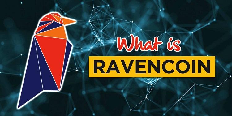 Оригинальный логотип RVN