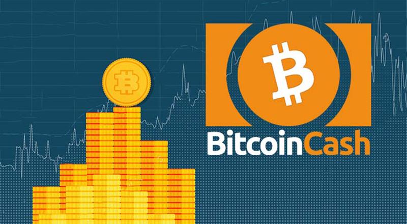 BTC.top взял под контроль почти всю сеть Bitcoin Cash