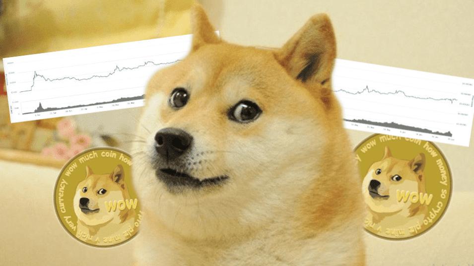 Catcatyfaucet, кран заточенный на DOGEcoin