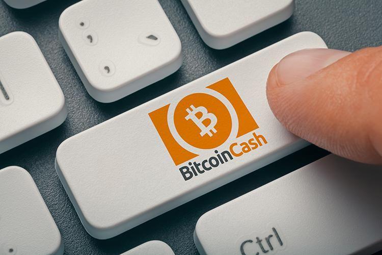 Будущее Bitcoin Cash