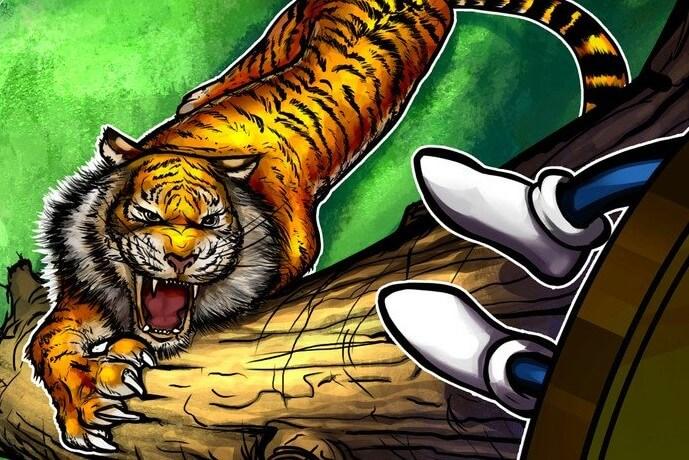 Bitfinex некоторое время не работала из-за DDoS-атаки
